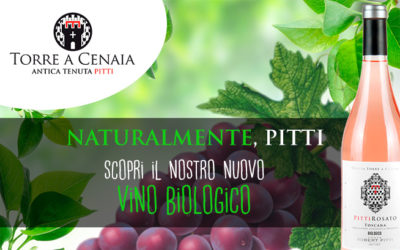 Il nostro vino biologico
